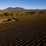 Vineyard For Sale Lake County