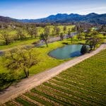 Mount St. Helena Vineyard and Winery For Sale
