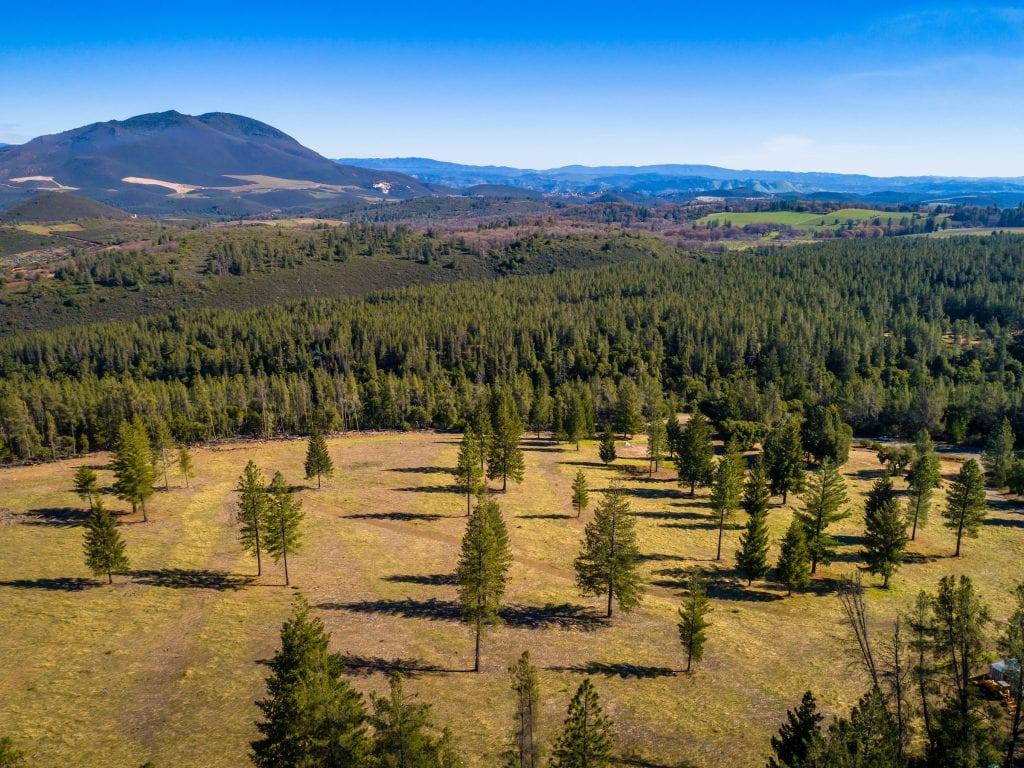 Vineyard for Sale in Lake County